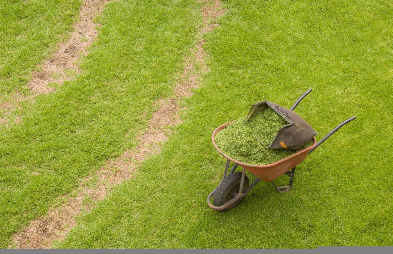 Jak poradzić sobie z zalaniem ogrodu? Rola odwodnień liniowych